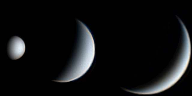 Damian Peach Telescopic Images of Venus